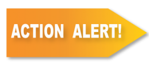 action-alert-2016
